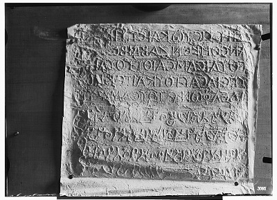 Palmyra (Syria): View of Paper Squeeze of Bilingual Inscription in the Palmyrene Dialect of Aramaic (Syriac Script) and in Greek [graphic]