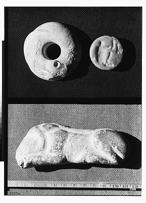 Three Shell Objects, including Two Stamp Seals [graphic]