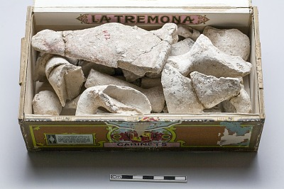 Architectural material; Stucco head of horse
