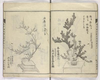 Enchūrōryū sōka zue