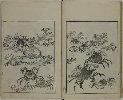 Hokusai gashiki