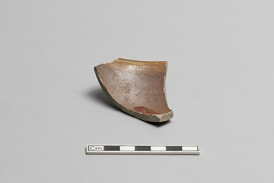 Bowl rim fragment