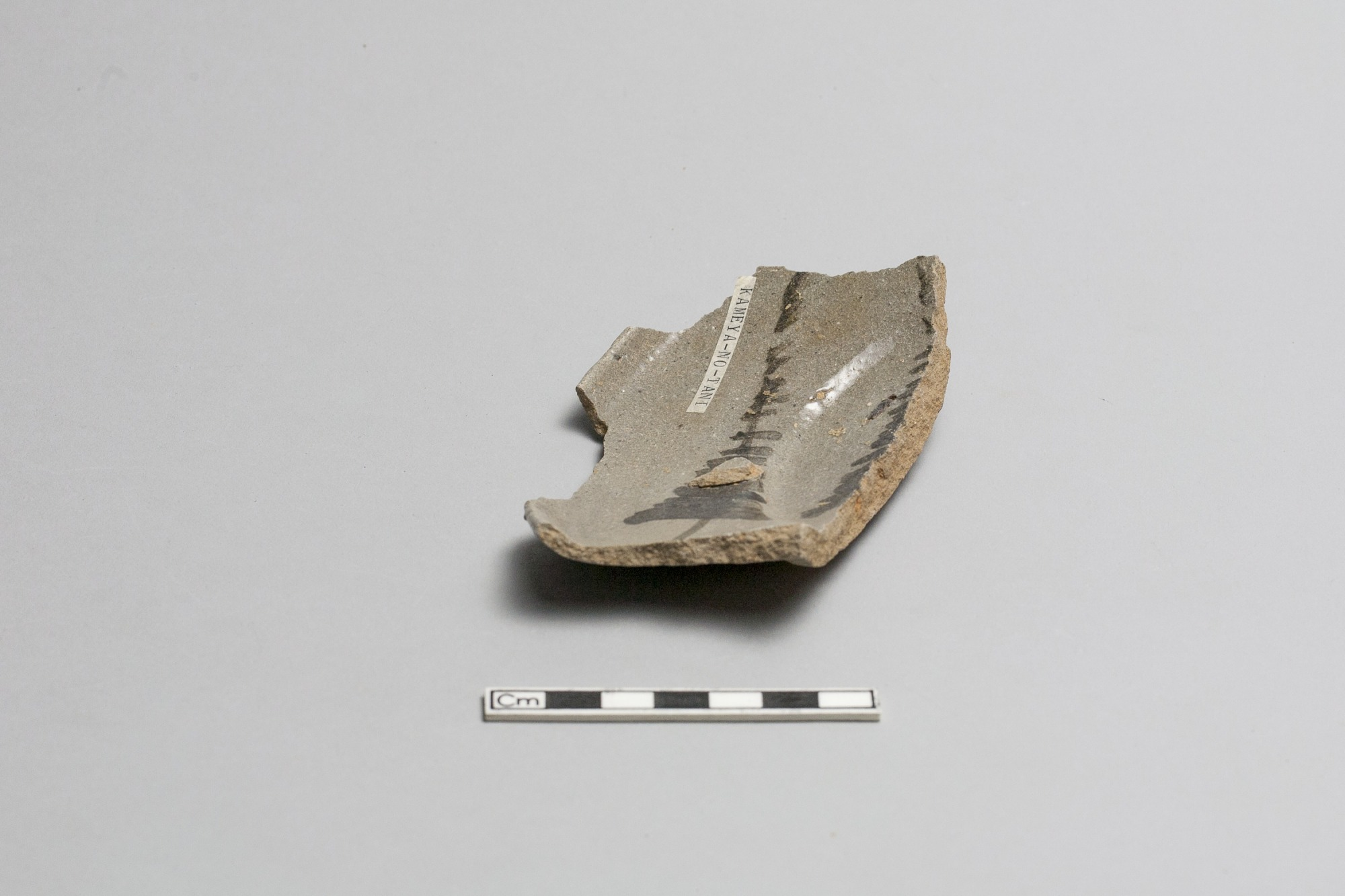Bowl fragment (rim)
