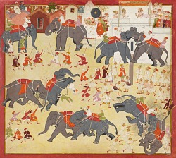 Maharana Raj Singh observing an elephant fight