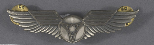 Badge, Pilot, All American Airlines