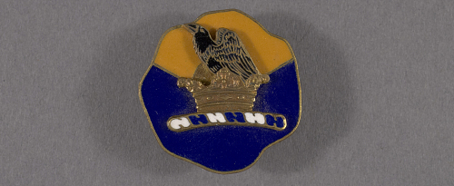 Insignia, 41st Division Aviation, United States Army Air Corps