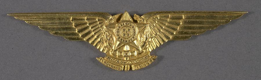 Badge, Pilot, Brazilian Air Force