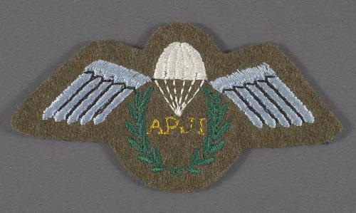 Badge, Parachute Jump Instructor, British Army