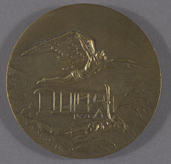 Medal, Naval Aviation
