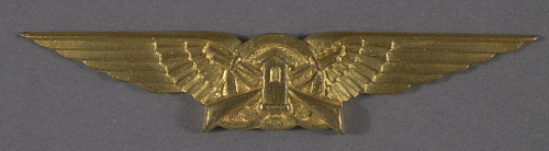 Badge, Guard, Brazilian Air Force