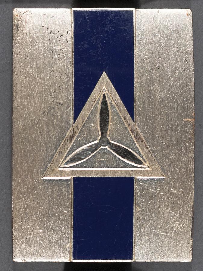 Badge, Squad Leader, Civil Air Patrol (CAP)
