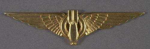 Badge, Bombardier, Brazilian Air Force