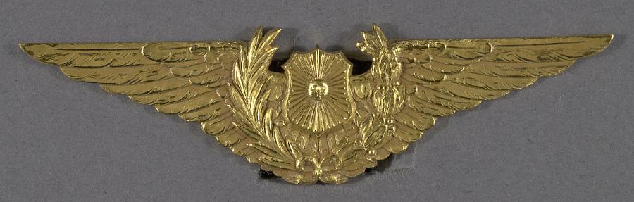 Badge, Pilot, UNIDENTIFIED