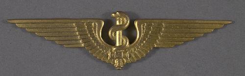 Badge, Flight Surgeon, Brazilian Air Force