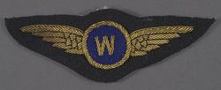 Badge, Observer, Royal Netherlands Navy