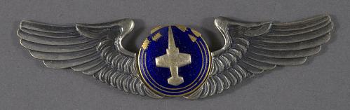 Badge, Aircrew, Japan Self Defense Force