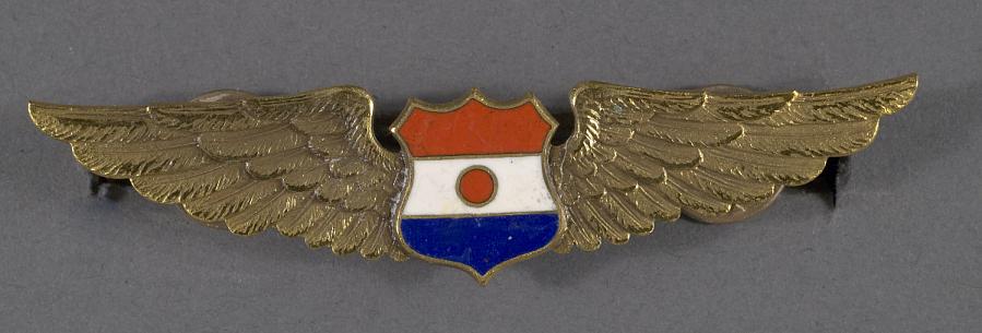 Badge, Pilot, Paraguay Air Force