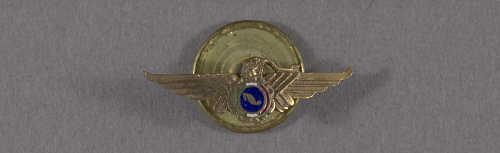 Pin, Lapel, Mexico Civil Aviation