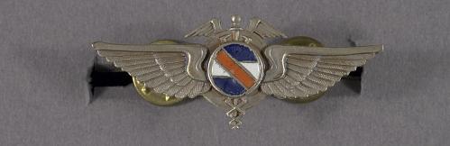 Badge, Flight Medic, Uruguay Air Force