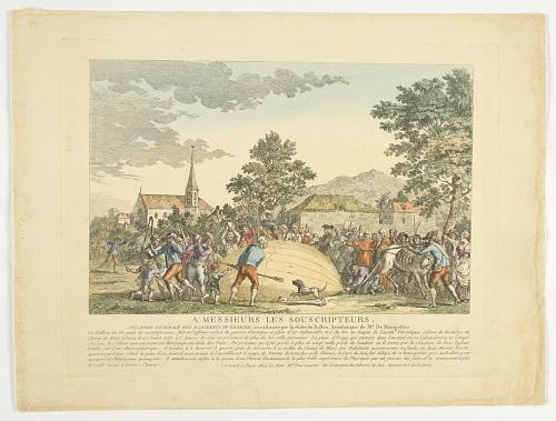 A Messieurs Le Souscripteurs. Allarme Générale de Habitants de Gonesse, occafionée par la chûte du Ballon Aréoflatique de Mr. De Montgolfier.