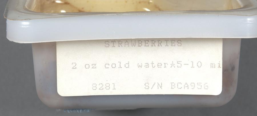 Space Food, Strawberries, STS-27