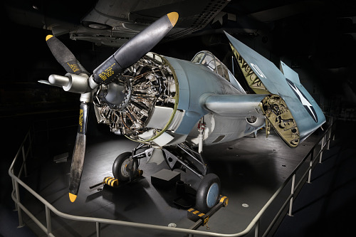 Grumman FM-1 (F4F-4) Wildcat aircraft with folded wings in museum