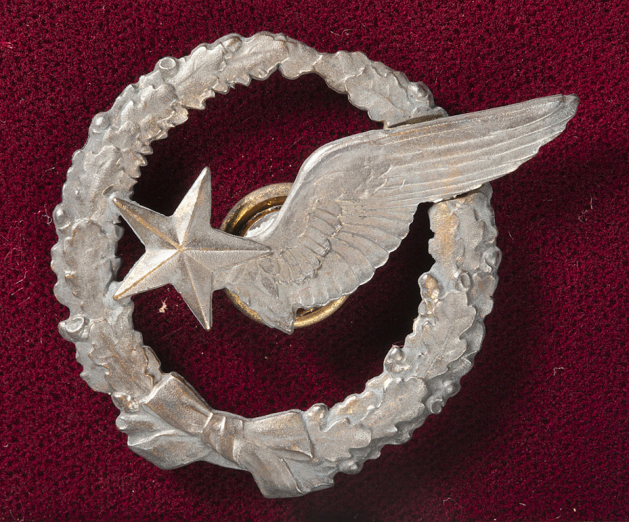 Silver-washed badge with wreath, a wing, and a star