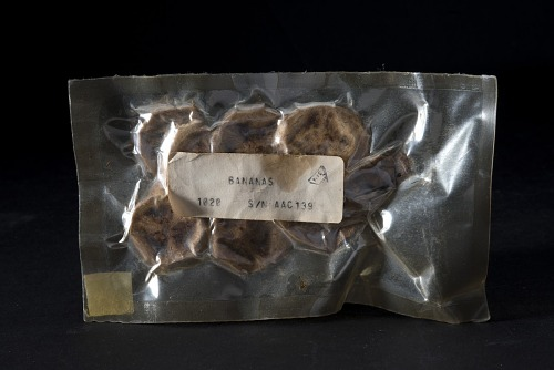 Space Food, Dried Bananas, Shuttle, STS-1