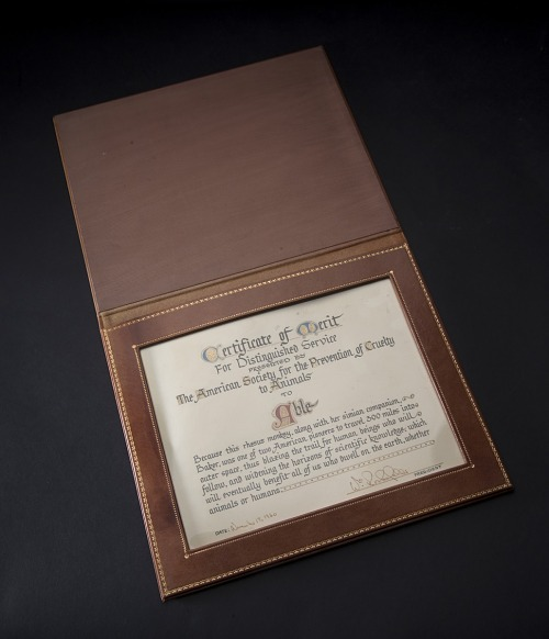 Opened brown leather case of certificate