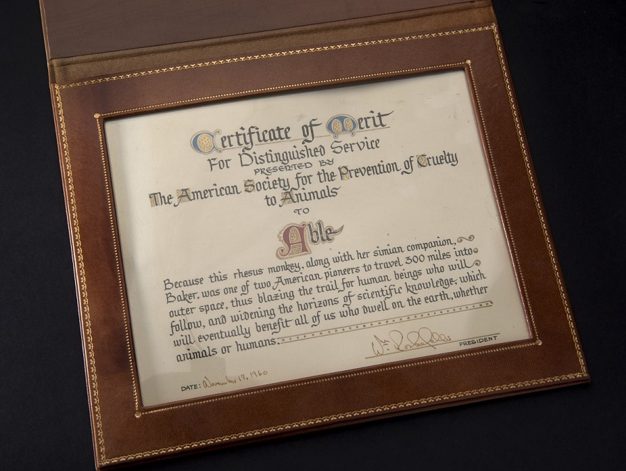Certificate in brown leather case with gold trim