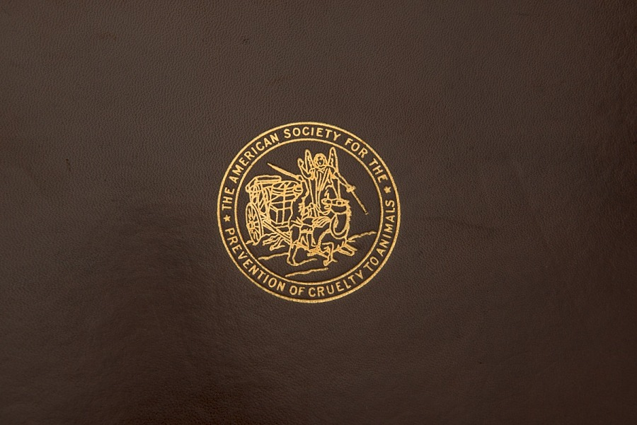 Zoom in of brown leather cover of American Society for the Prevention of Cruelty to Animals                 Certificate