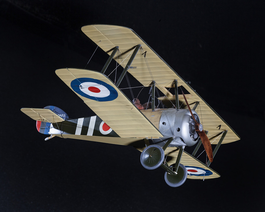 Bottom-side view of green and tan, plastic exhibit model of a British Royal Air Force Sopwith                 F.1/3 Camel 'Comic' Night Fighter aircraft