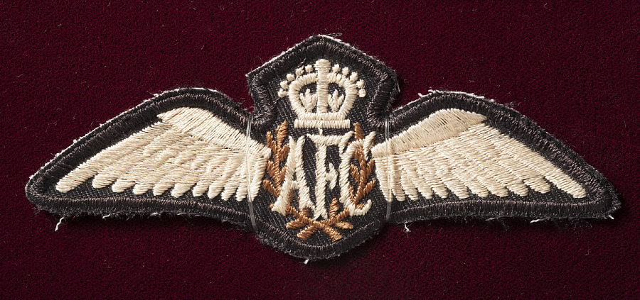 "Embroidered badge in shape of wings, with crown and ""AFC"" in center"