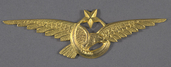 Badge, Tourism, Turkish Air Force