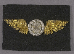 Badge, Observer, United States Navy