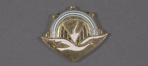 Badge, Navigator, Argentine Air Force, Argentine Air Force