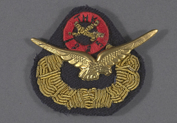 Badge, Cap, Turkish Air Force