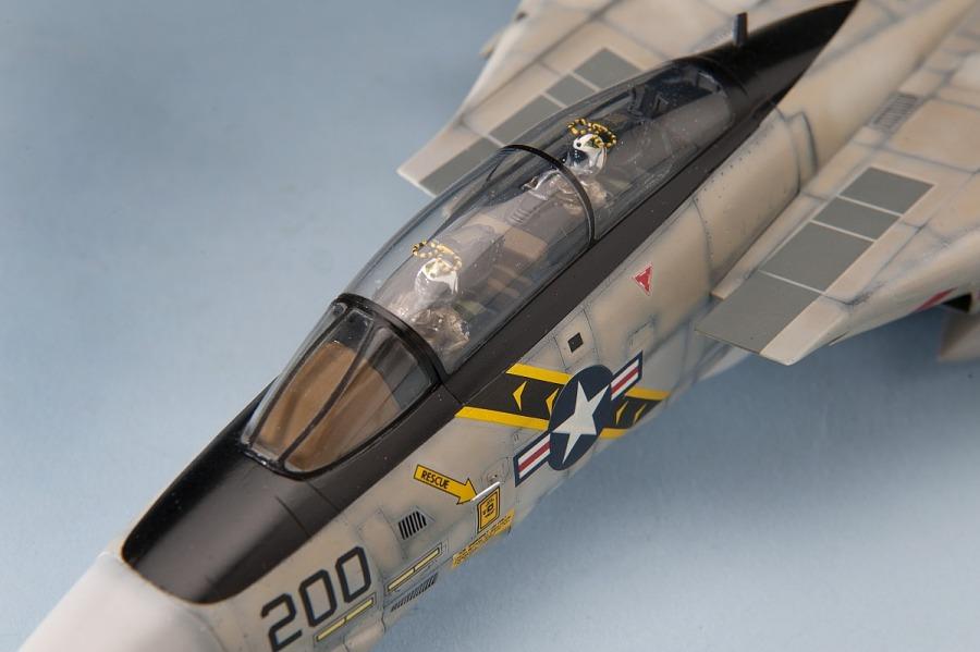 Model, Static, Grumman F-14A Tomcat