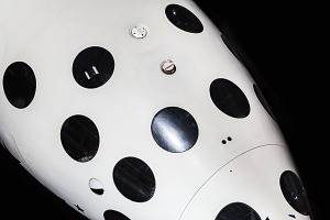 images for SpaceShipOne-thumbnail 46