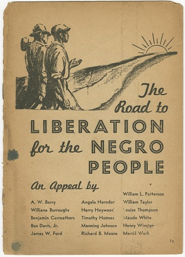 Image for The Road to Liberation for the Negro People