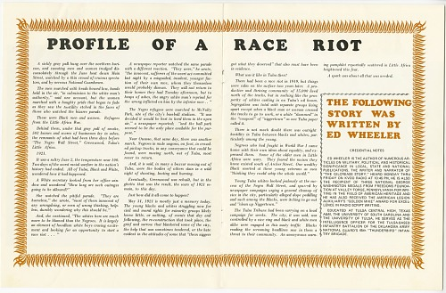Image for Profile of a Race Riot