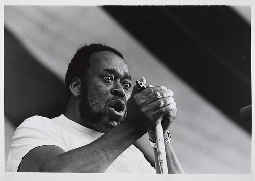 Image for James Cotton, 1979