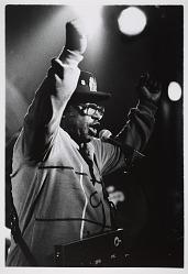 Bo Diddley, 1990
