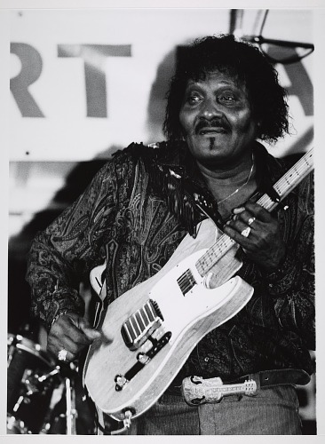 Image for Albert Collins, 1991