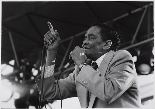 Image for Little Jimmy Scott, 1993
