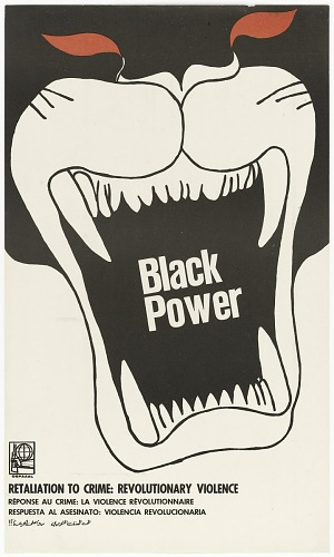 Image for Black Power