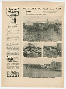 images for Advertisement for The Pullman Company-thumbnail 2