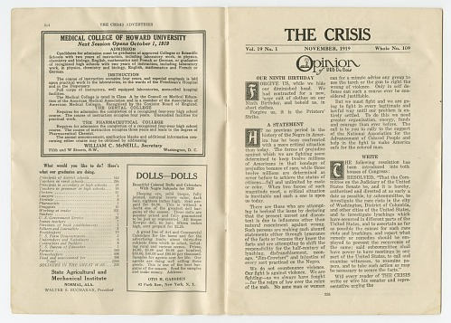Image for The Crisis Vol. 19 No. 1