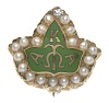 Thumbnail for Member badge for Alpha Kappa Alpha Sorority