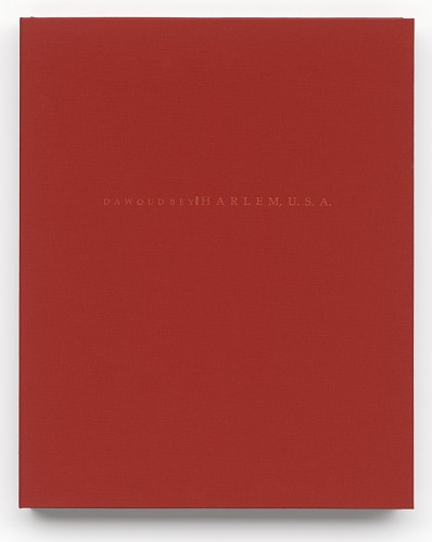 Image for Harlem, USA portfolio case